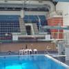The Liberties diving club make a splash!