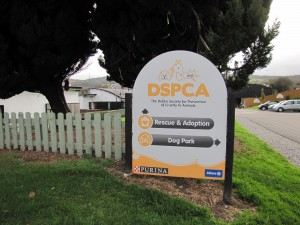 Entrace to the DSPCA's shelter in Rathfarnham, Dublin (Photo- Dermot O'Shea)