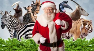 Image by- Angela Conroy - Dublin Zoo - christmas-banner