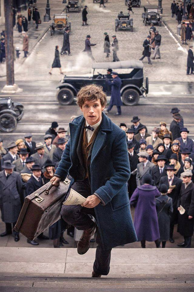 Eddie Redmayne in Fantastic Beasts and Where to Find Them. Source: Facebook.com