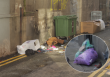 Dublin's north inner city considered 'seriously littered'