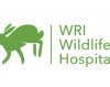 Ireland's first wildlife hospital is open for care